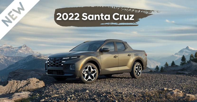 Celebrate The New Santa Cruz